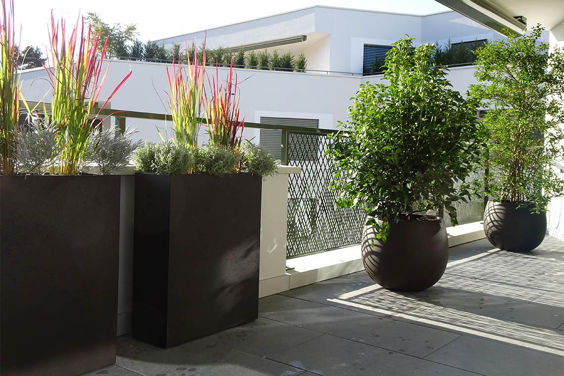 Terrassen2-3