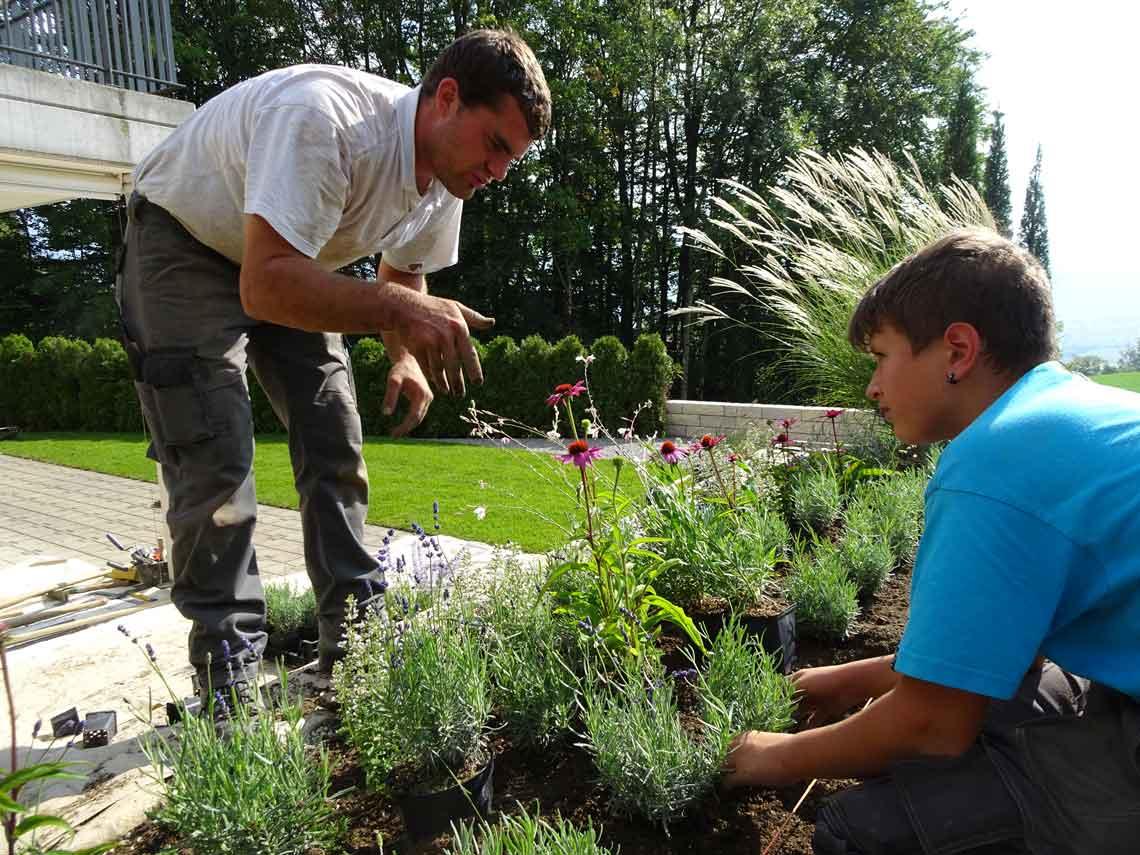 pflanzen, Andrin zeigt wie es geht