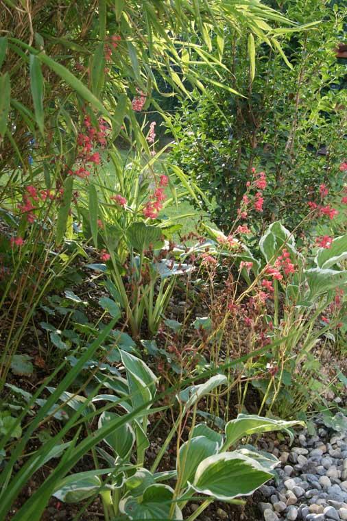 Stimmungsvolle Pflanzung